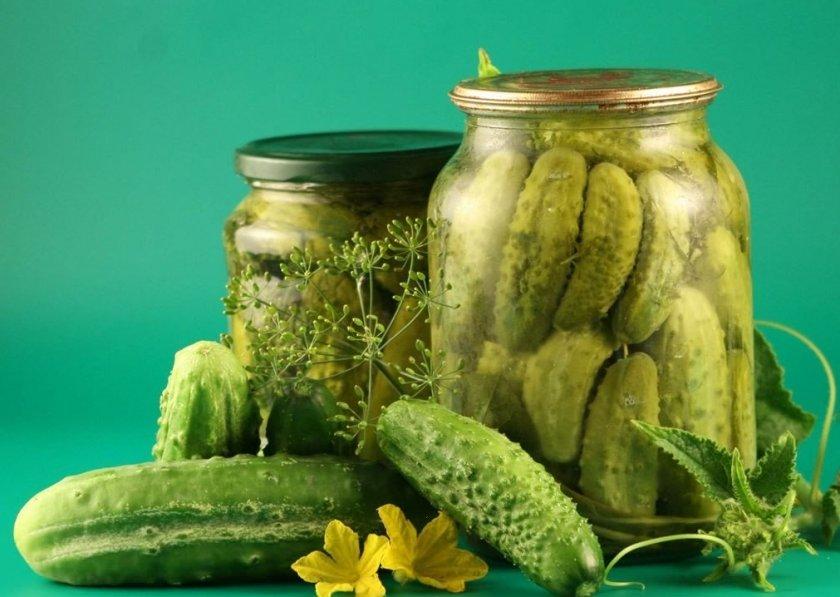 ТОП-6 вкуснейших рецептов засолки сладких огурцов на зиму в банках
