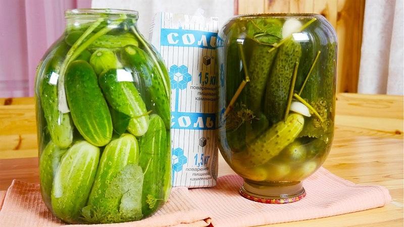 Как хранить соленые огурцы в квартире: правила хранения консерваций