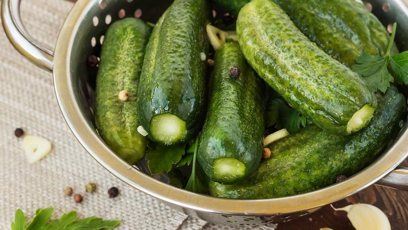 Можно ли консервировать горькие огурцы: советы и проверенные рецепты