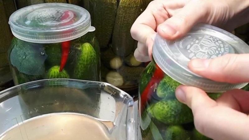 Зимние заготовки: засолка огурцов холодным способом под капроновую крышку