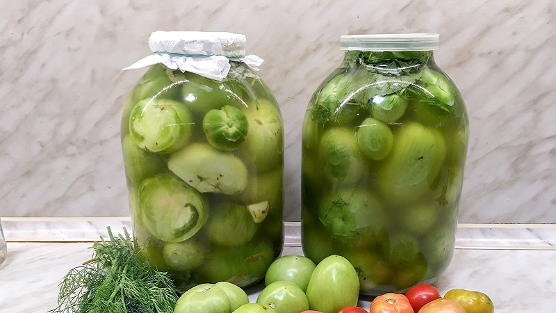 Лучшие рецепты в вашу копилку: как солить зеленые помидоры