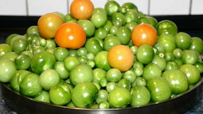 Рецепты наших бабушек: как солить зеленые помидоры в бочке