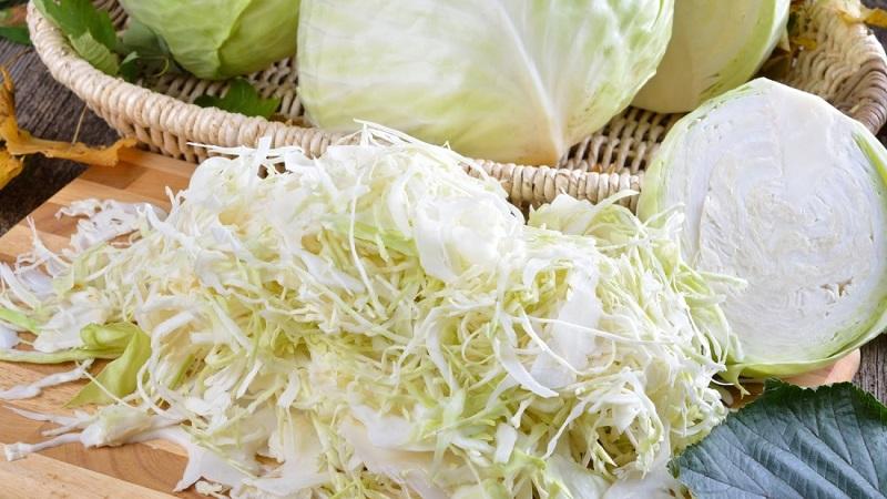 Когда солить капусту в 2020 году: благоприятные дни в октябре для засолки капусты
