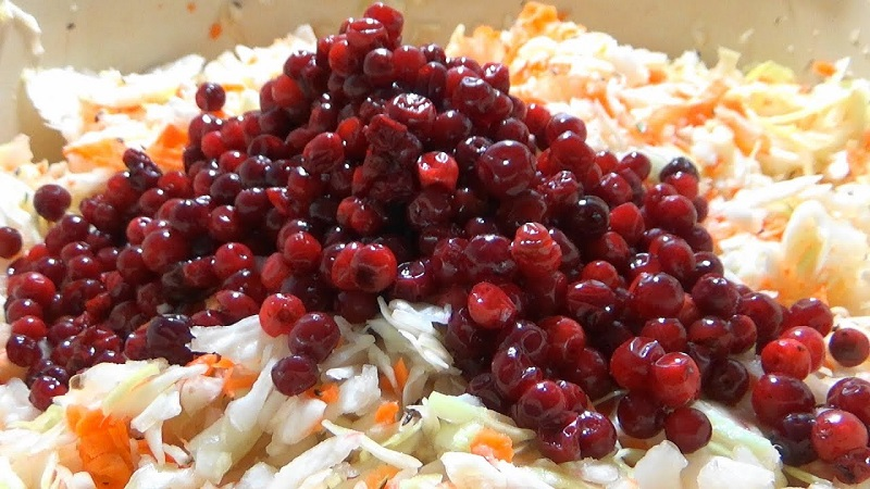 Квашеная капуста с брусникой - рецепт классический и несколько его вариаций