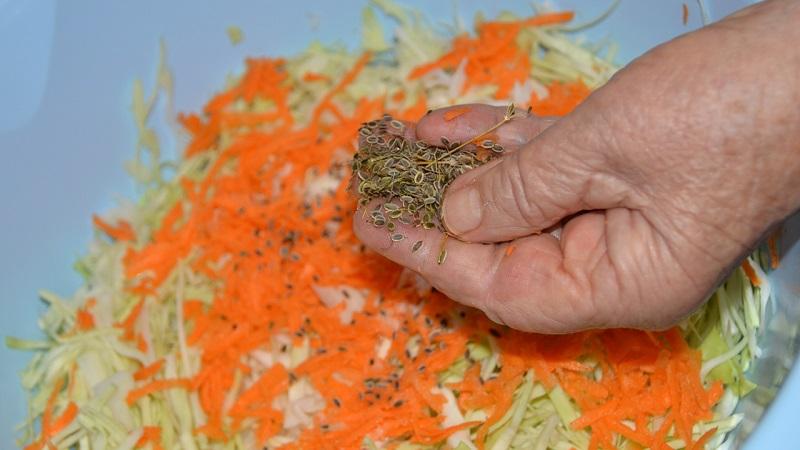 Квашеная капуста с семенами укропа: рецепт в собственном соку, в рассоле и другие варианты