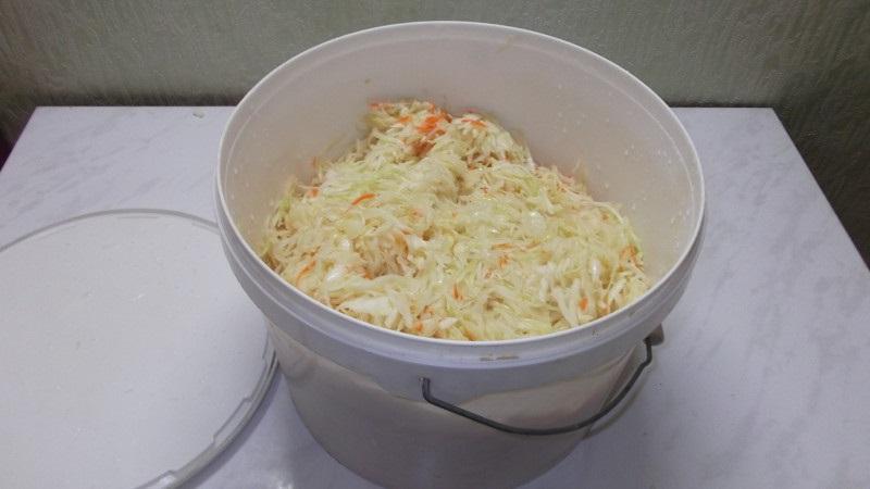 Секреты вкусных заготовок: можно ли квасить капусту в пластиковом ведре, советы и простые рецепты